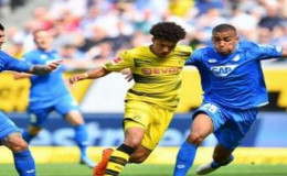 Прогноз на матч: Хоффенхайм - Боруссия Дортмунд (20.12.2019)