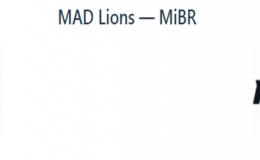 Прогноз на киберспорт: MAD Lions — MiBR (14.04.2020)