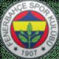 Прогноз на футбол: Фенербахче - Анкарагюджю (18.01.2021)