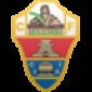 Прогноз на футбол: Валенсия - Эльче (30.01.2021)