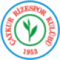 Прогноз на футбол: Ризеспор - Эрзурум ББ (12.02.2021)
