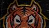 Реальные отзывы о ставках с канала «Tiger bet»